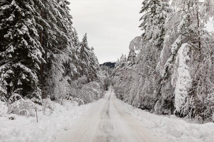 Harz Schnee Straße Weihnachten